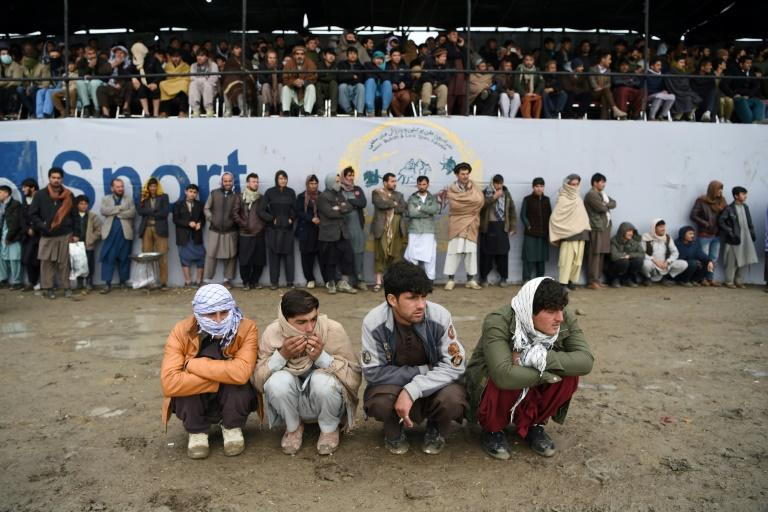 Organisers say they want to make the week-long buzkashi league an annual affair, with plans to stage it in different cities each year (AFP Photo/WAKIL KOHSAR)