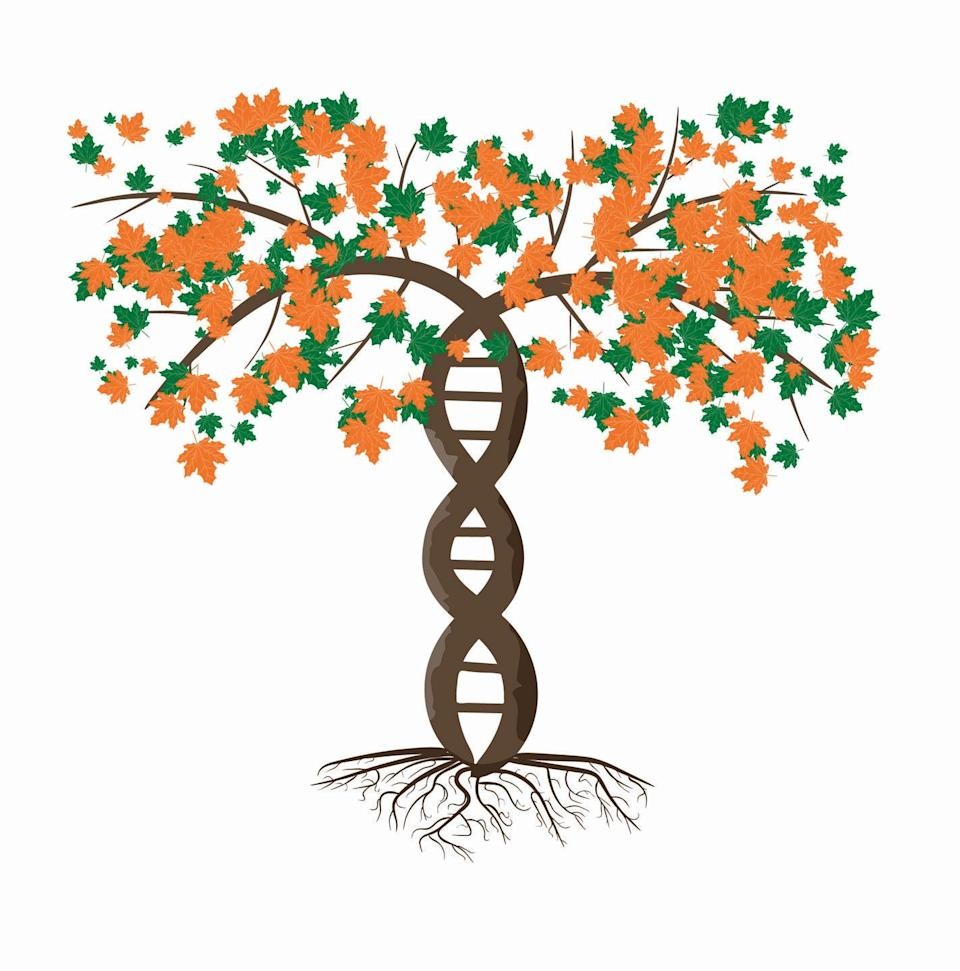<p>If your mom is always looking to learn more about her roots, make her a detailed family tree using all of the information you've been able to gather about your family. If you're artsy, put your talents to good use to make the tree beautiful and informative. </p>