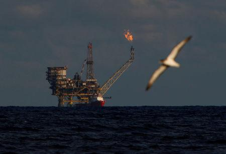FILE PHOTO: A seagull flies in front of an oil platform in the Bouri oilfield some 70 nautical miles north of the coast of Libya