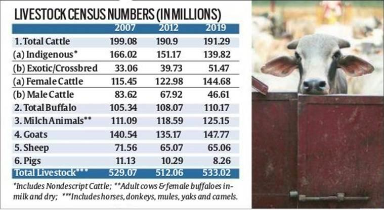 cattel in india, cows decreasing in india, Rashtriya Gokul Mission (RGM), desi cattle, BJP cow, indian express