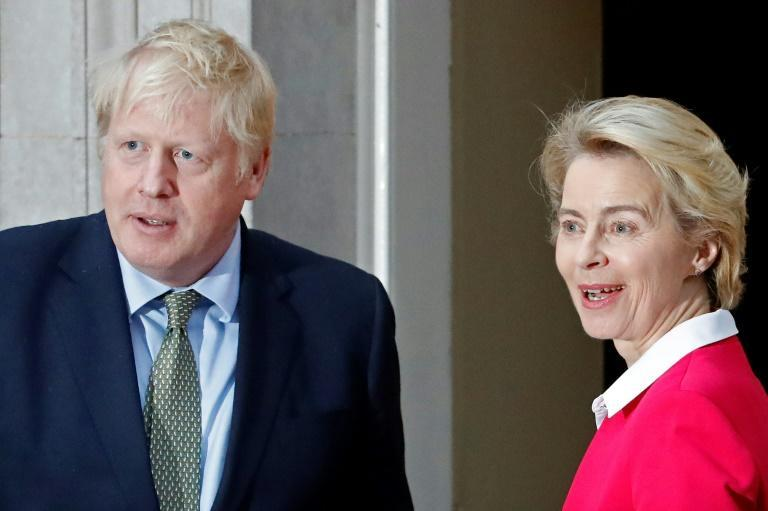 Johnson and von der Leyen met at 10 Downing Street in January