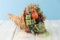"""<p>Throw a couple of these on your dining room table, and you'll have a simple but impressive set up in no time.</p><p><strong>Get the tutorial at </strong><a href=""""https://www.succulentsandsunshine.com/succulent-filled-cornucopia-thanksgiving-centerpiece-idea/"""" rel=""""nofollow noopener"""" target=""""_blank"""" data-ylk=""""slk:Succulents and Sunshine"""" class=""""link rapid-noclick-resp""""><strong>Succulents and Sunshine</strong></a><strong>.</strong></p><p><a class=""""link rapid-noclick-resp"""" href=""""https://www.amazon.com/Shop-Succulents-Assorted-Collection-Succulent/dp/B01LXPI743/ref=sr_1_1_sspa?tag=syn-yahoo-20&ascsubtag=%5Bartid%7C10050.g.2130%5Bsrc%7Cyahoo-us"""" rel=""""nofollow noopener"""" target=""""_blank"""" data-ylk=""""slk:SHOP SUCCULENTS""""><strong>SHOP SUCCULENTS</strong></a></p>"""