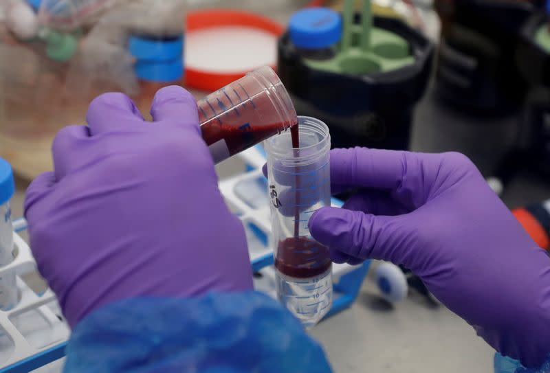 FILE PHOTO: FILE PHOTO: Blood Processing Lab in the Cambridge Institute of Therapeutic Immunology and Infectious Disease