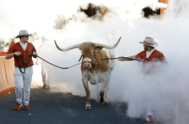 "The Texas Longhorns mascot ""Bevo"" enters the field before the game with the LSU Tigers Saturday Sept. 7, 2019 at Darrell K Royal-Texas Memorial Stadium in Austin, Tx. ( Photo by Edward A. Ornelas )"