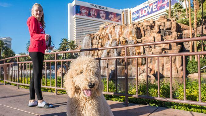 girl-with-dog-in-Las-Vegas