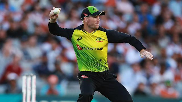Australia have strength in numbers and answered their critics in the T20 tri-series with England and New Zealand, says David Warner.