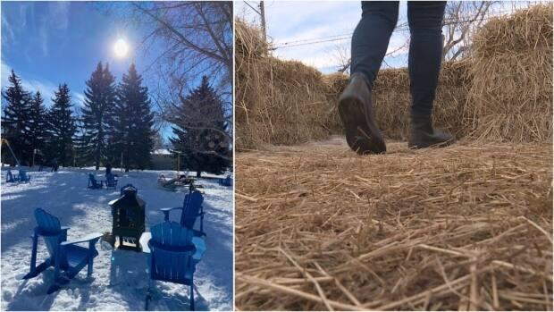 Parks Foundation Calgary's Embrace the Outdoors grant helped groups imagine a winter outside.  (submitted by Keith Hlewka/CBC - image credit)