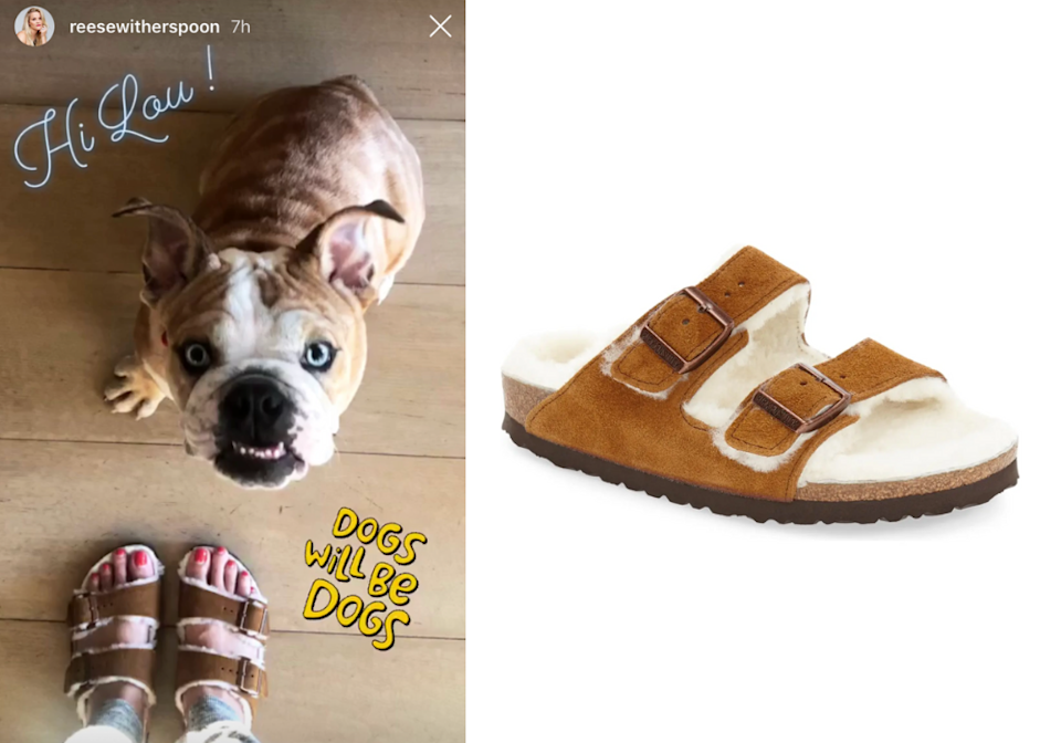 Reese Witherspoon shared a snap of her dog Lou and her Arizona Genuine Shearling Lined Slide Sandals. Images via Instagram/ReeseWitherspoon, Nordstrom.