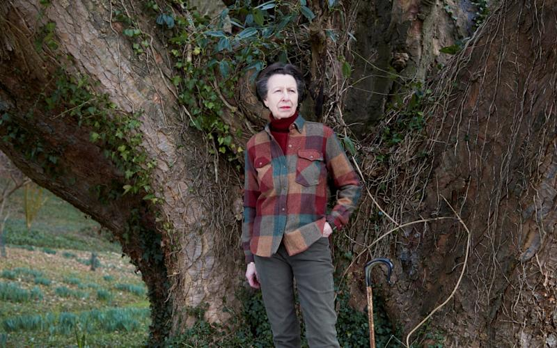 Princess Anne does country casual - John Swannell/ Reuters