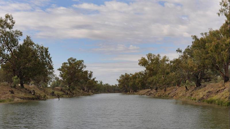 The Murray-Darling Basin Plan is at risk after government changes were shot down in the Senate