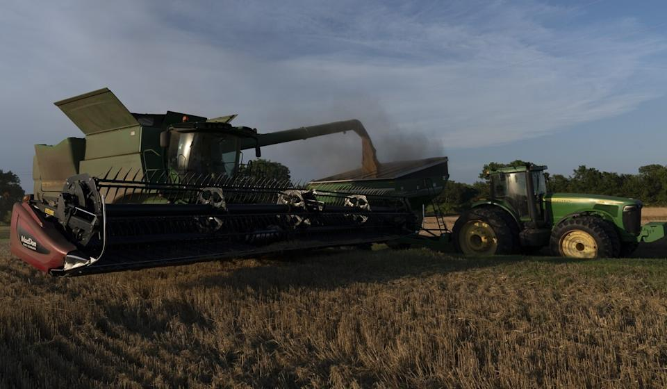 It's estimated that American farmers have lost US$6.7 billion in export sales in 2018 and 2019 from the trade war with China. Pictured, winter wheat is harvested last month in Pawnee, Oklahoma. Photo: Nick Oxford/Bloomberg