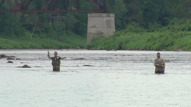 The Government of New Brunswick has launched a program to rebate hunting and fishing outfitters 20 per cent of the price of packages they sell to New Brunswickers this spring and summer. Pictured are anglers fishing for salmon on the Miramichi River. (Radio Canada - image credit)
