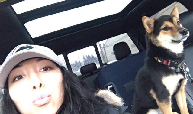 The daughter of the Buffalo Bills owners has lost her precious dog, Yoshi, and needs your help. (@KPegula)