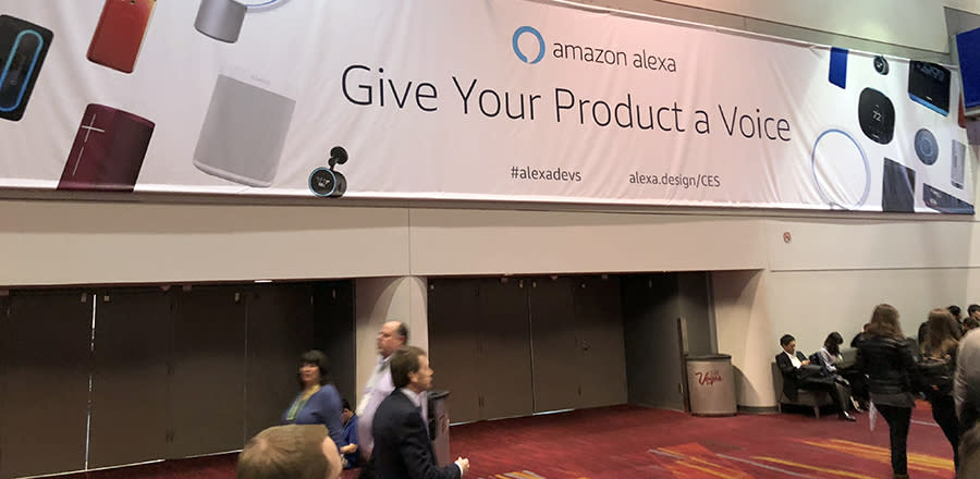 You couldn't swing a cat without hitting an Alexa-enabled product.