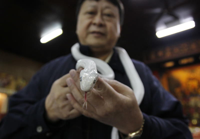 In this photo taken on Wednesday, Jan. 9, 2013, Director of the Temple of White Snakes Lo Chin-shih holds a genetically modified, auspicious, white snake as he talks about its significance in the upcoming Chinese lunar new year of the snake according to the lunar zodiac calendar in Taoyuan county, in north western Taiwan. Lo said the new year of the snake would be a time of steady progress, in contrast to the more turbulent nature of the outgoing year of the dragon. The Chinese new year fall on Feb. 10. (AP Photo/Wally Santana)