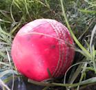 On November 22, India played with a pink ball in its first ever day-night cricket Test match against Bangladesh at Eden Gardens, Kolkata. India won the match by an innings and 46 runs. The colour pink was chosen after ball makers first experimented with optic yellow and bright orange which could easily be spotted on the grass. However, batsmen complained that the colour clashed with the brown patches on the pitch. The ball maker, Kookaburra, put a black seam on to the ball after former Australian skipper, Steve Smith had suggested that the seam be made more visible. <em><strong>Image credit: </strong></em>By Aravind Sivaraj - Own work, CC BY-SA 3.0, https://commons.wikimedia.org/w/index.php?curid=33906269
