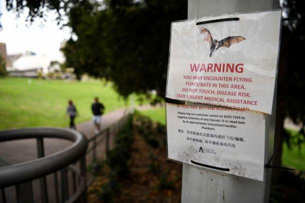 PHOTO: A bat warning sign in Adelaide, April 1, 2020, in Adelaide, Australia. (Tracey Nearmy/Getty Images)