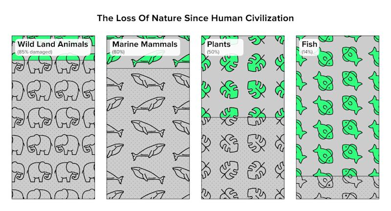 Humans have caused the loss of around 80 percent of wild land and marine mammals, and half of plants. Source: Yinon M. Bar-On, Rob Phillips, and Ron Milo, PNAS, 2018 (Photo: Jade Marucut for HuffPost)