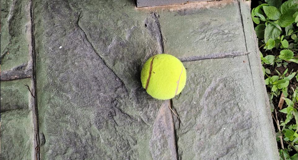 One of the tennis balls left out the front of a Cairns property. Source: Facebook