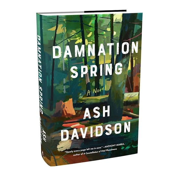 """The cover of the book """"Damnation Spring,"""" by Ash Davidson"""
