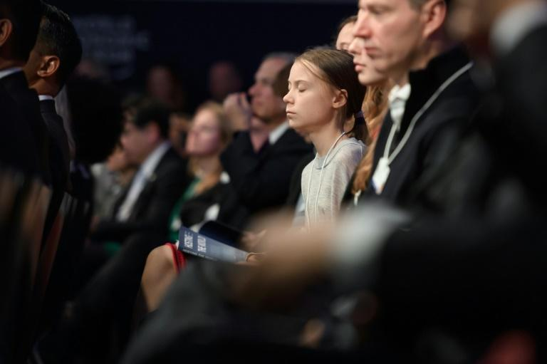 "Swedish climate activist Greta Thunberg (pictured January 21, 2020) said ""it doesn't take a college degree in economics"" to understand how fossil fuels caused climate change, after US Treasury Secretary Steven Mnuchin took a verbal swipe at her (AFP Photo/FABRICE COFFRINI)"