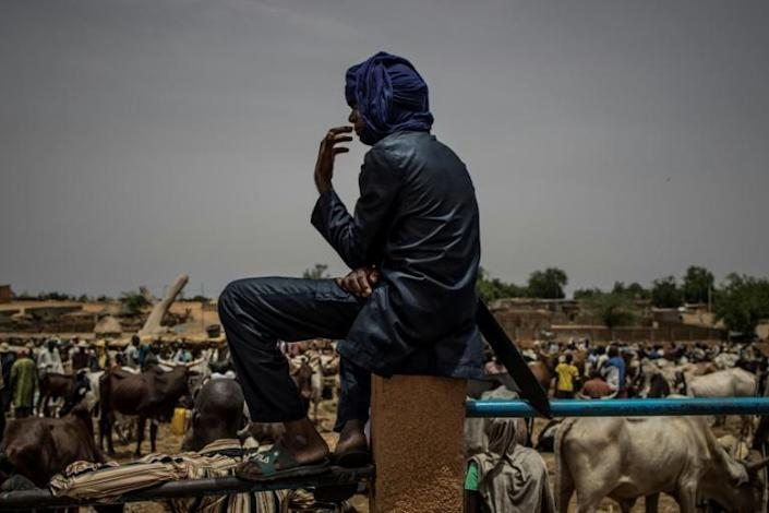 Many Fulani have had to abandon herding and settle down in towns in bid to feed their families (AFP Photo/Marco LONGARI)