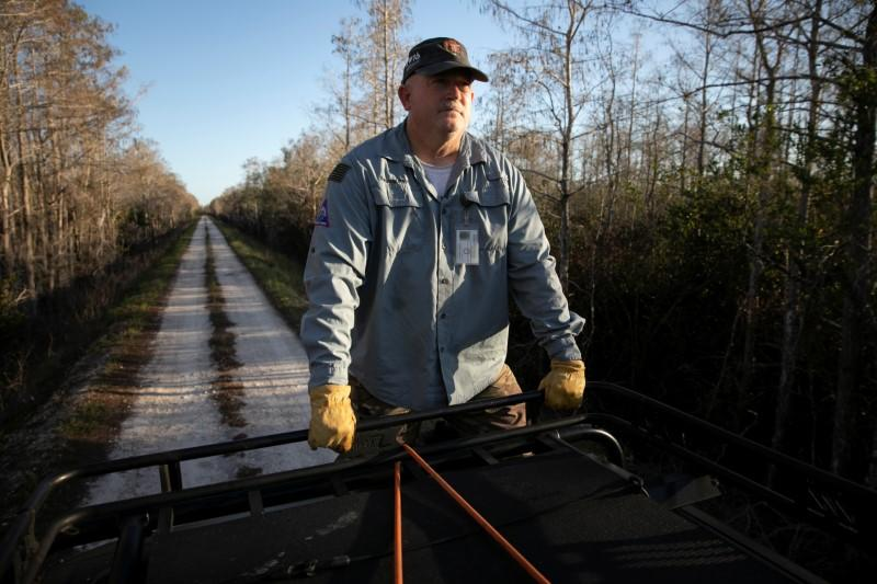 Thomas Aycock rides on top of his SUV as he explores the Everglades' swamps looking for Burmese pythons, near Ochopee