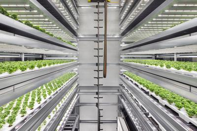 Infarm, the world's fastest-growing urban farming company, has introduced its new high-capacity, automated, modular Growing Center - a local farm and distribution center in one, that can generate the crop-equivalent of up to 10,000 m2 of farmland, with up to 400 times higher efficient food production than soil-based agriculture. The cloud-connected, high-yield centers join Infarm's expanding global network of self-learning farms that improve plant yield, taste, and nutritional value while reducing the use of natural resources. Credit: Infarm/diephotodesigner.de (PRNewsfoto/Infarm)