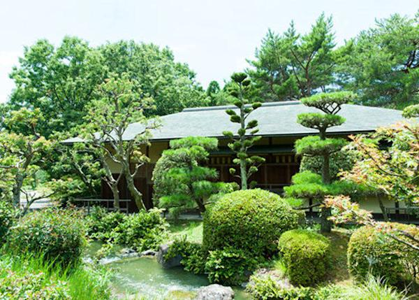 ▲Murasaki-tei has a calming atmosphere. (Usage time from 9:00AM~5:00PM, ¥28000 day rental, tax included *Air conditioning fee is separate; please call 06-6915-3246)