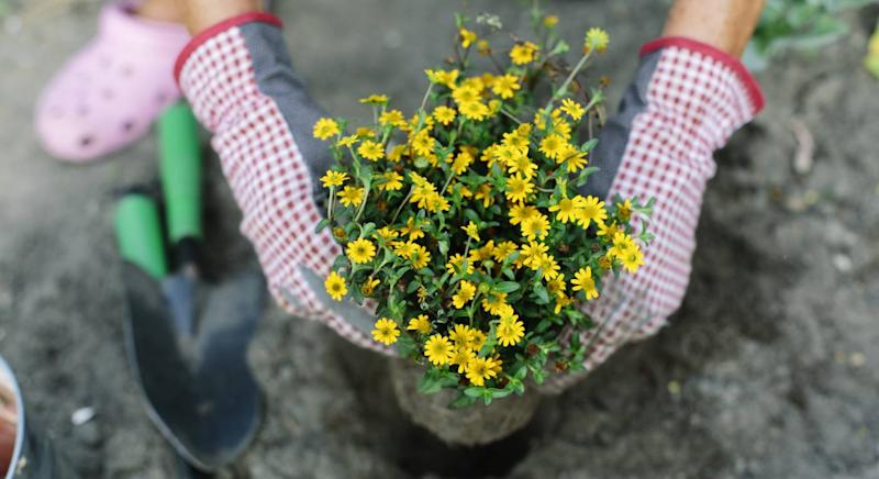 These gloves will make gardening more glamorous. (Getty Images)