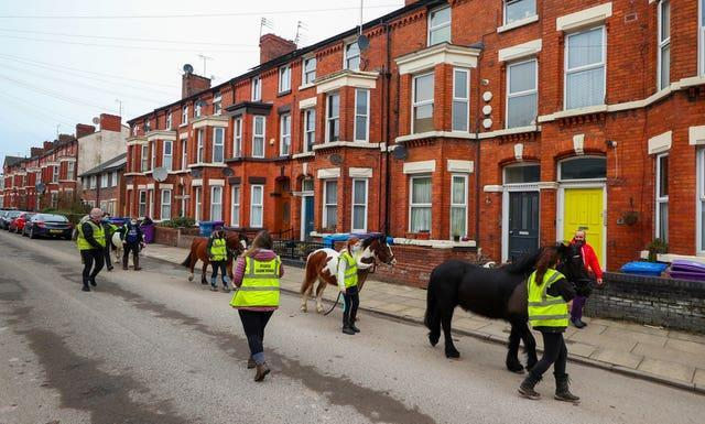 Ponies from Park Palace Ponies in Dingle are walked through the streets of Liverpool to cheer up residents during lockdown (Peter Byrne/PA)
