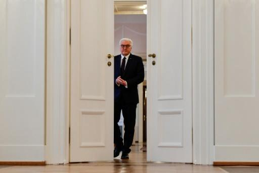 <p>Germany's president: master of diplomacy with cards to end crisis</p>
