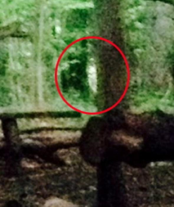 campers-picture-blair-witch-ghost-woods-bristol