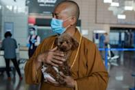 Zhi is no ordinary animal rescuer: he is a Buddhist monk who gives stray dogs a new life either at his ancient monastery or at a shelter he runs in Shanghai