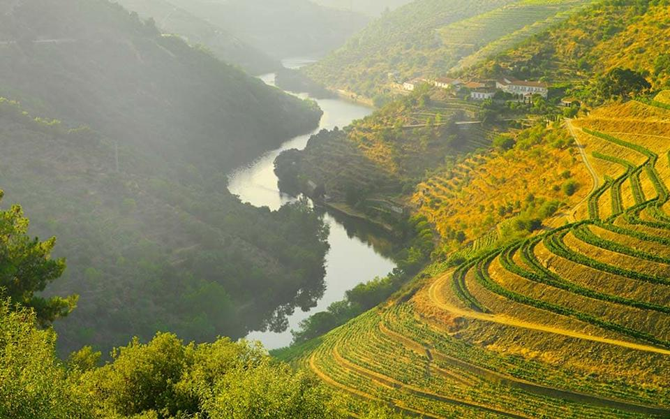Next year could be perfect for joining the riverboats that cruise though the dramatic gorges of the Douro Valley - SHAUN EGAN