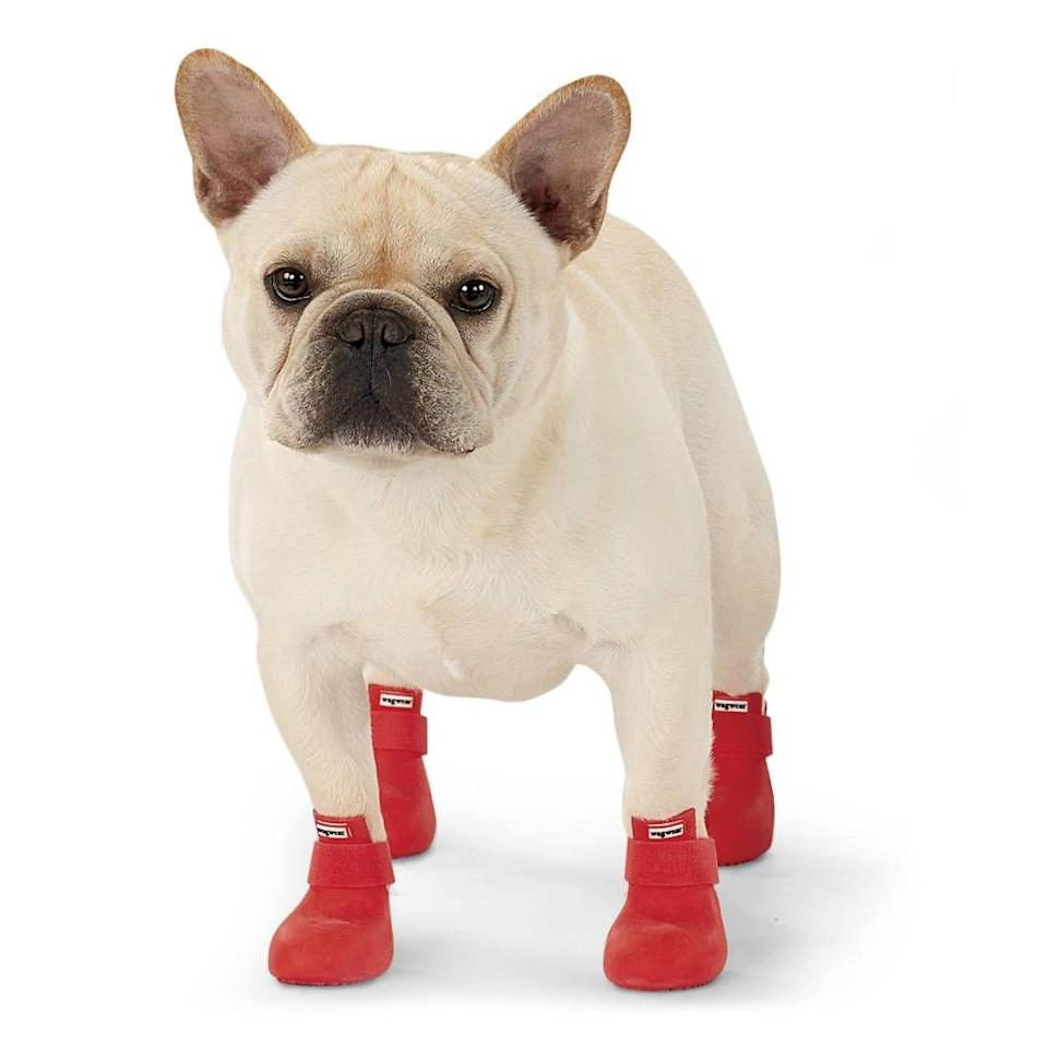 """<h3><strong>Wellington Dog Rain-Boots</strong></h3><p>Protecting your pooch from from slush puddles and harmful snow salts has never looked so chic than it does with these 100% rubber with gripper soles welly-boots.</p><br><br><strong>WagWellies</strong> Rain Boots (Set of 4), $64.95, available at <a href=""""https://www.inthecompanyofdogs.com/itemdy00.aspx"""" rel=""""nofollow noopener"""" target=""""_blank"""" data-ylk=""""slk:In The Company of Dogs"""" class=""""link rapid-noclick-resp"""">In The Company of Dogs</a>"""