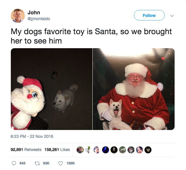 """<p>This is officially the cutest pet moment of the holidays. Now go treat your own pup to brand new toys this Christmas — we already rounded up some <a href=""""https://www.goodhousekeeping.com/holidays/gift-ideas/g474/pet-gifts/"""" rel=""""nofollow noopener"""" target=""""_blank"""" data-ylk=""""slk:paw-some gift ideas."""" class=""""link rapid-noclick-resp"""">paw-some gift ideas.</a></p>"""
