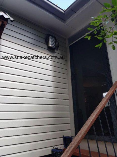 Would you have noticed the python near the doorway? Source: Snake Catchers Brisbane, Ipswich, Logan & Gold Coast