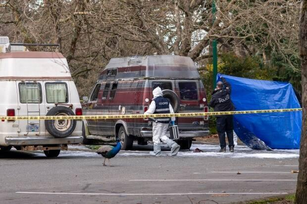 A camper van caught fire at Beacon Hill Park in Victoria on Thursday, according to police. One person was later found dead. (Kieran Oudshoorn/CBC - image credit)