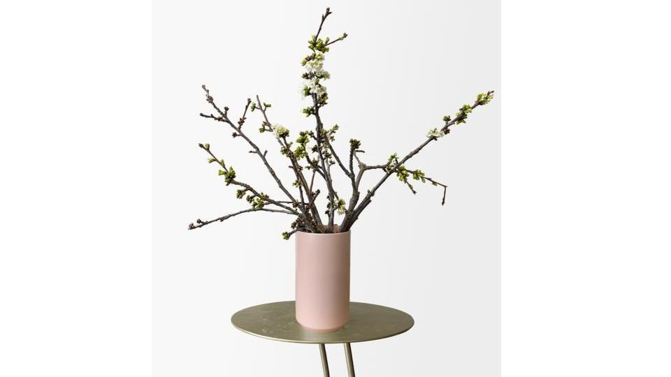 Cherry Blossom Branches - Tonic Blooms, $67