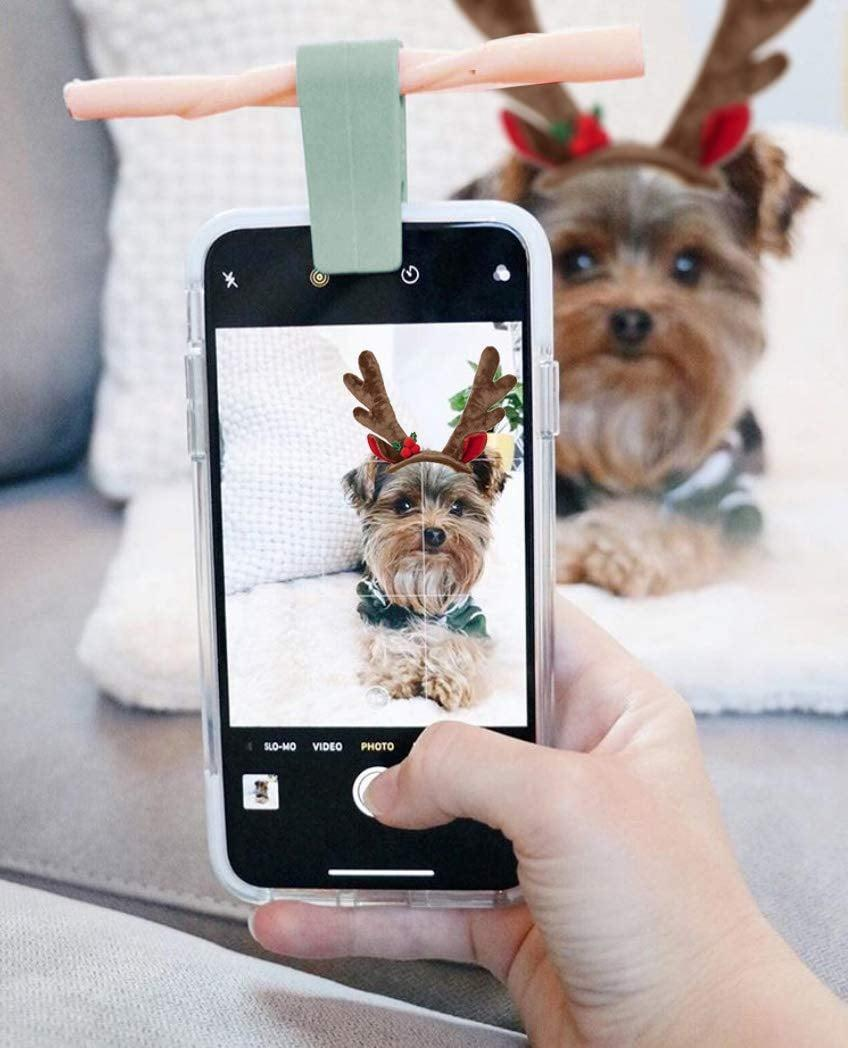 <p>Your teen's pet photos just got way better thanks to this <span>Woofie Pet Selfie + Portrait Tool</span> ($7).</p>