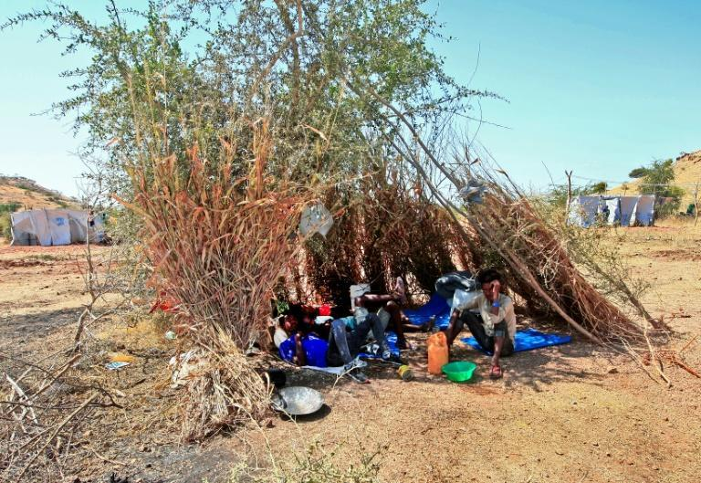 Tens of thousands have fled to neighbouring Sudan