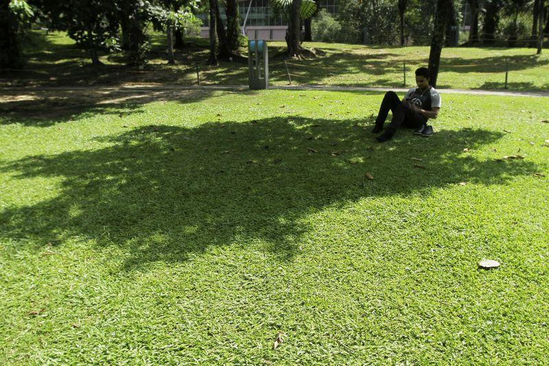 A man checks his phone in the shade on a hot day at KLCC Park in Kuala Lumpur, March 30, 2016. ― Picture by Yusof Mat Isa