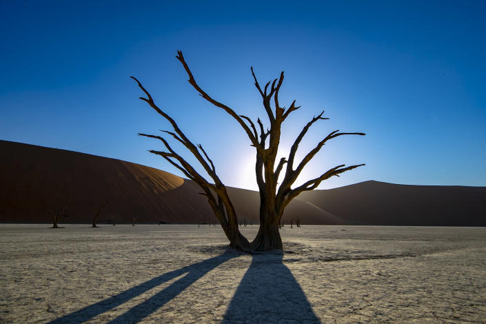 Deadvlei is a salt and clay pan surrounded by high red dunes, located in the southern part of the Namib Desert, in the Namib-Naukluft National Park of Namibia. (Photo: Gordon Donovan/Yahoo News)