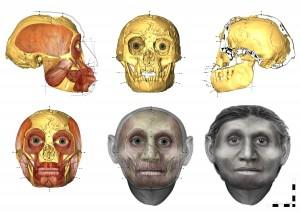 Anthropologist Susan Hayes used forensic techniques to recreate the face of the Homo floresiensis individual known as LB1 from her 18,000-year-old skull. Image: Susan Hayes