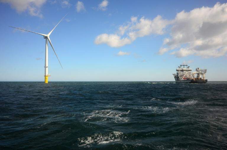The price of electricity generated by wind turbines, both on and offshore, has fallen to make it competitve with plants that use fossil fuels