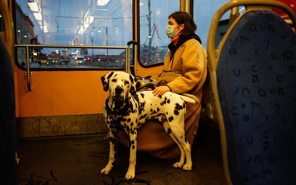 A commuter wearing a protective face mask rides the tram with her dalmatian dog in Gothenburg, Sweden - Fredrik Lerneryd / Bloomberg