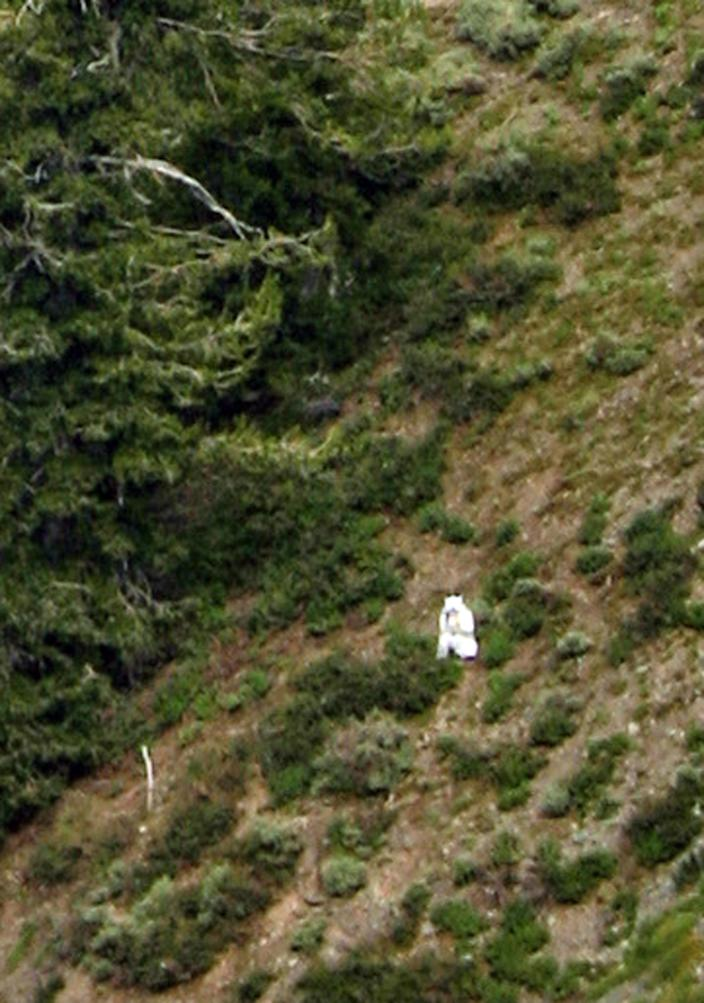 """In this Sunday, July 15, 2012 photo, a person is seen in a goat suit in the Wasatch Mountains on Ben Lomond peak outside of Ogden, Utah. Wildlife officials are worried he could be in danger as goat hunting season approaches. Phil Douglass of the Utah Division of Wildlife Resources said Friday the person is doing nothing illegal, but he worries the so-called """"goat man"""" is unaware of the dangers. """"My very first concern is the person doesn't understand the risks,"""" Douglass said. """"Who's to say what could happen."""" (AP Photo/Cody Creighton)"""