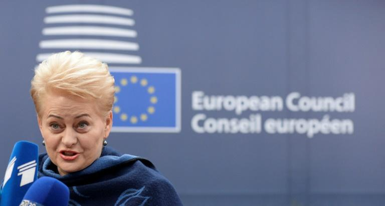 Lithuania's President Dalia Grybauskaite, pictured in 2016, warned that she may use her veto against the bill that would allow dual citizenship for Lithuanians living in fellow EU and NATO countries