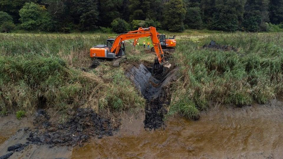 A crane was used to dig the breach in the riverbank (Steve Haywood/National Trust/PA)